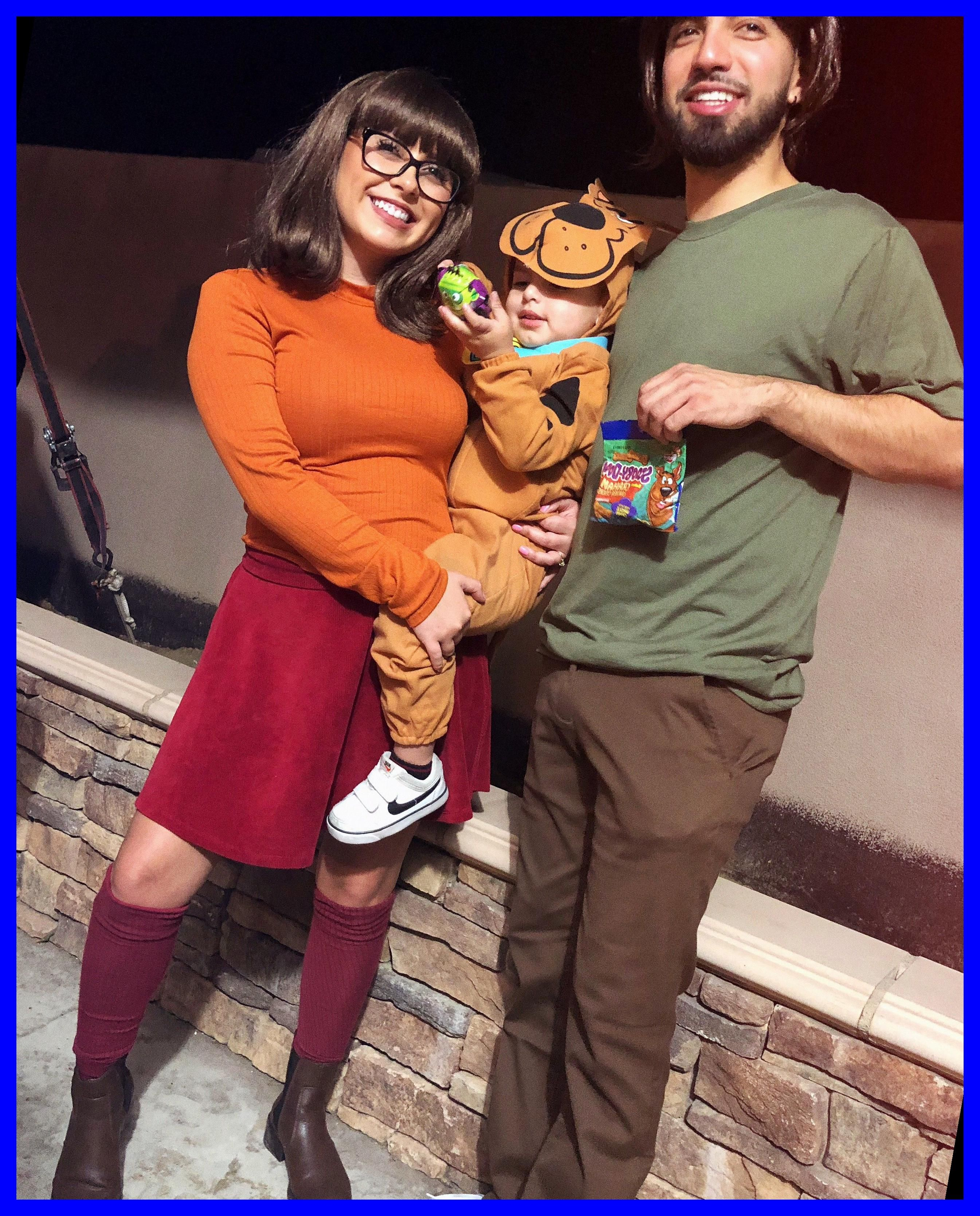 Shaggy Velma And Scooby Doo 36 Halloween Family Costumes Pregnant 2020 Cute Baby Halloween Costumes Toddler Halloween Costumes Diy Halloween Costumes Easy