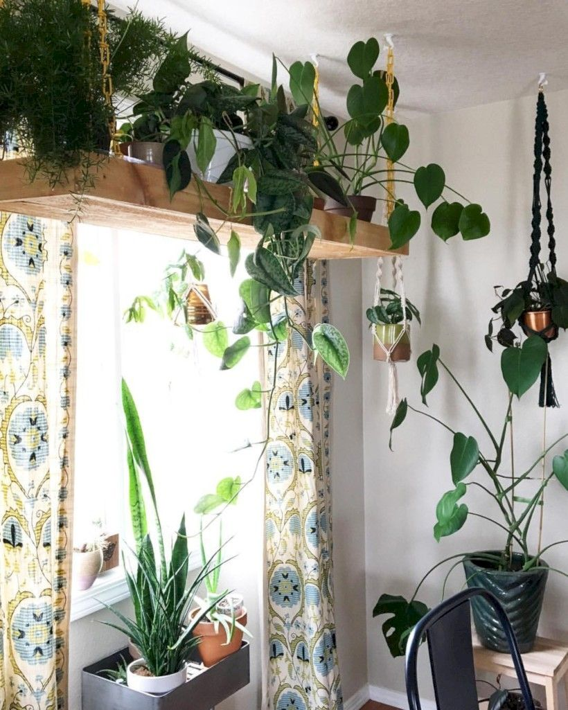 41 Indoor Hanging Planters You Can Make Yourself | Plant ... on Hanging Plant Pots Indoor  id=25688