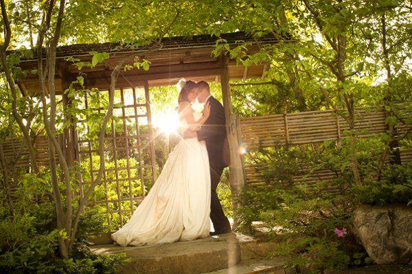 4ba19c95ef987a394690455ed4f941ae - Anderson Japanese Gardens Rockford Il Wedding