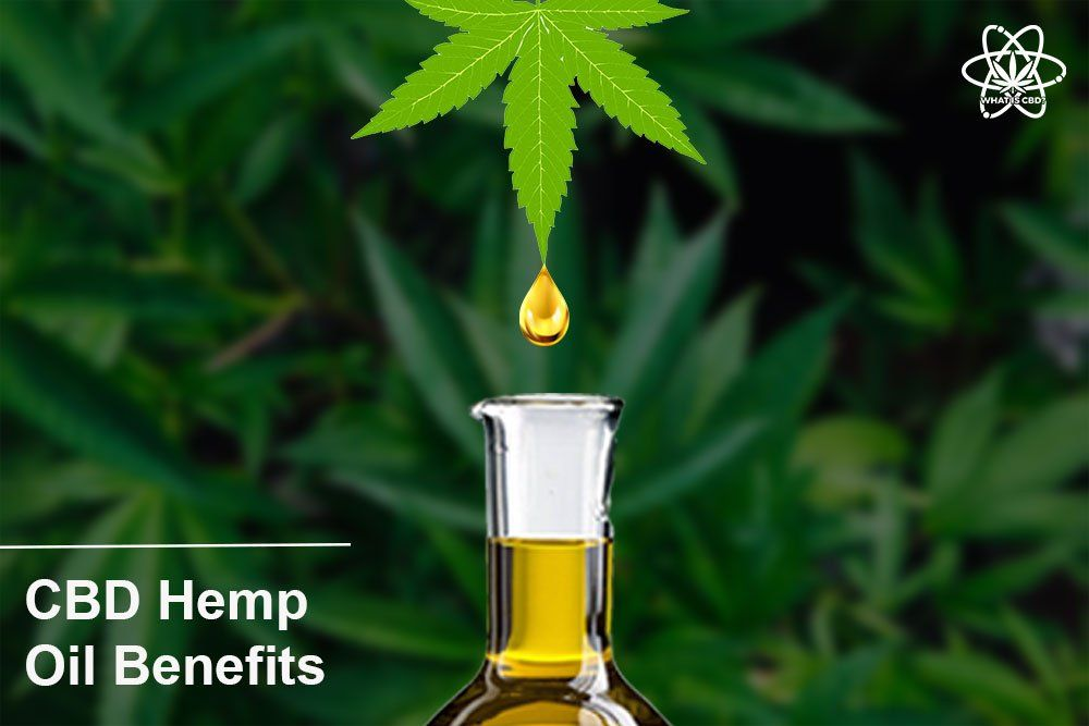 CBD From Hemp Oil - Benefits you Must Know | Hemp oil and