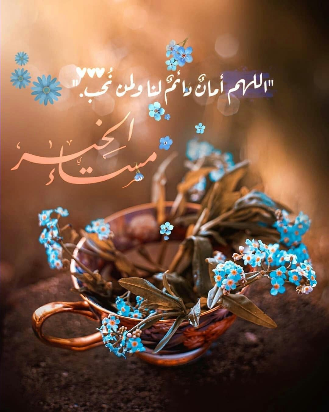 مساء الخير اللهم أمان دائم لنا ولمن نحب Beautiful Morning Messages Good Night Flowers New Good Night Images