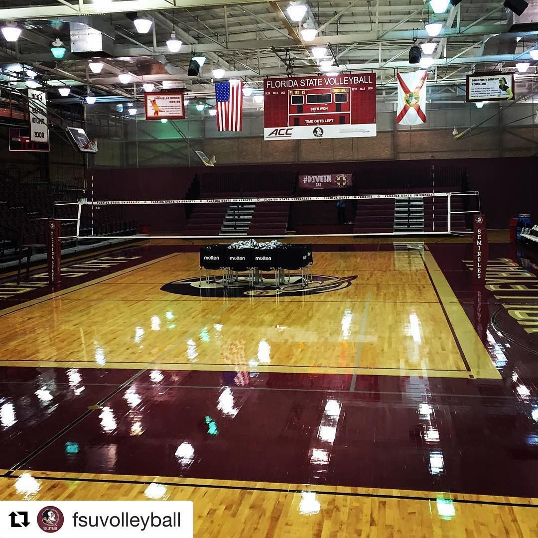 Florida State University Volleyball Si1 Volleyball Poles Sicarbonnation Florida State Volleyball Net Volleyball