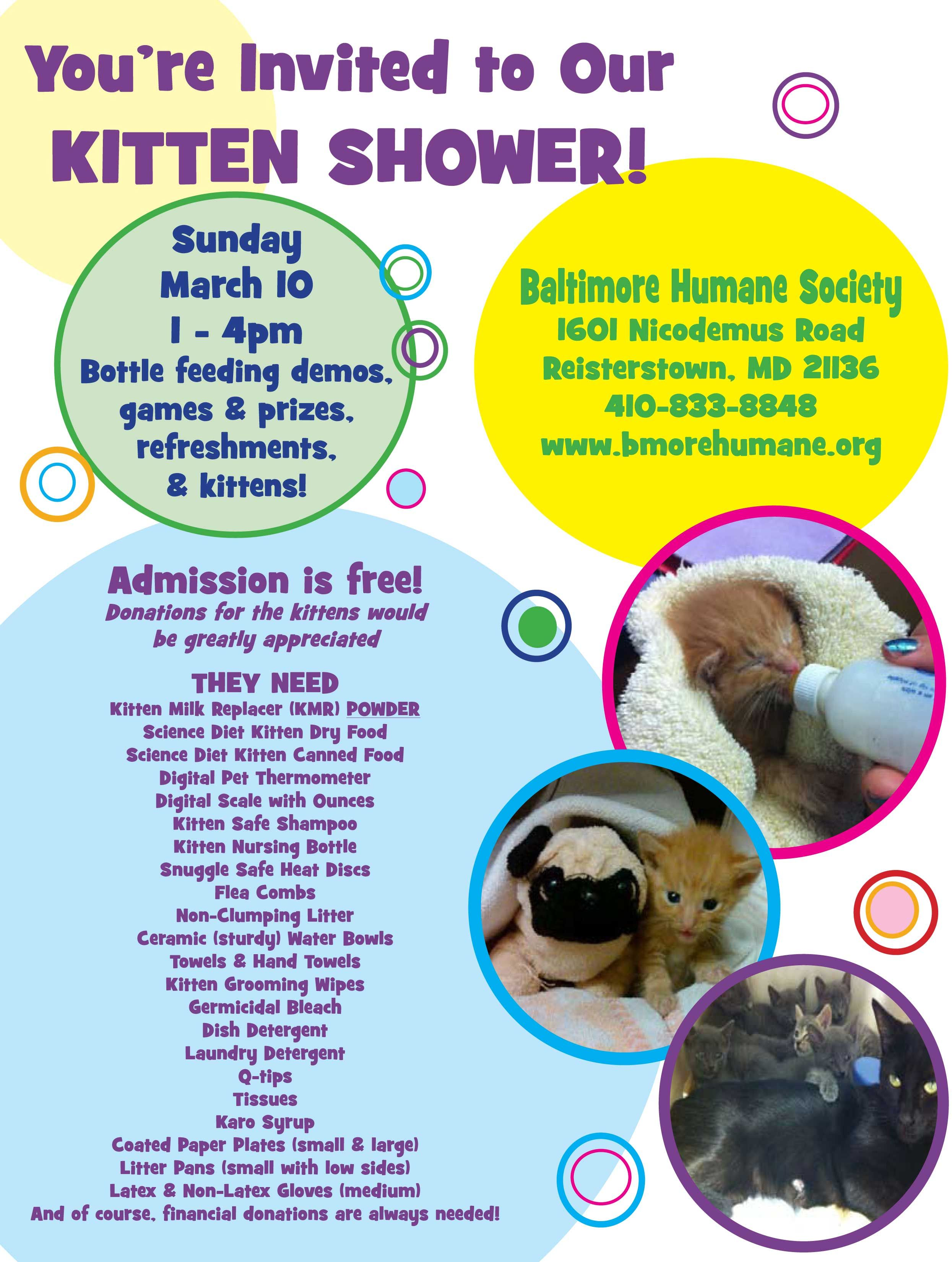 Bhs Kitten Shower Kitten Rescue Animal Shelter Fundraiser Pet Holiday