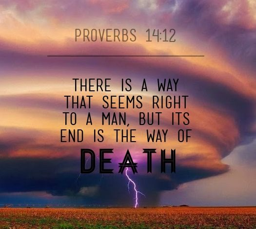 Proverbs 14:12 | Christian quotes inspirational, Nice words about life,  Book of proverbs