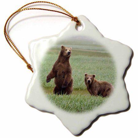 3dRose Mother Grizzly bear and cub, Katmai NP, Alaska - US02 GPR0021 - Greg Probst, Snowflake Ornament, Porcelain, 3-inch