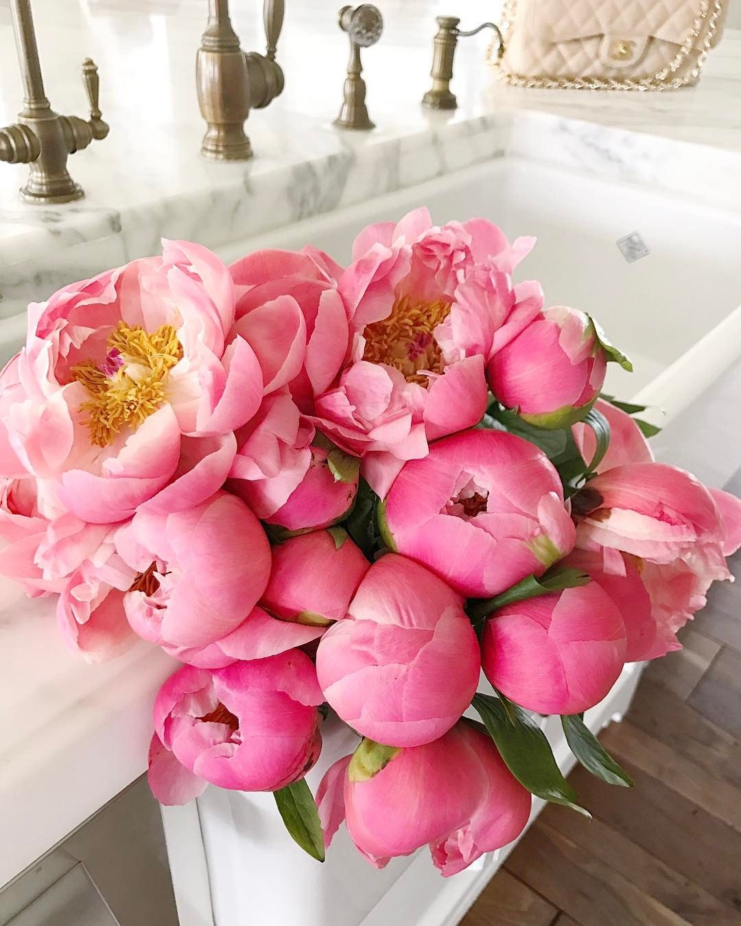 4 927 Likes 67 Comments Rach Parcell Pink Peonies Rachparcell