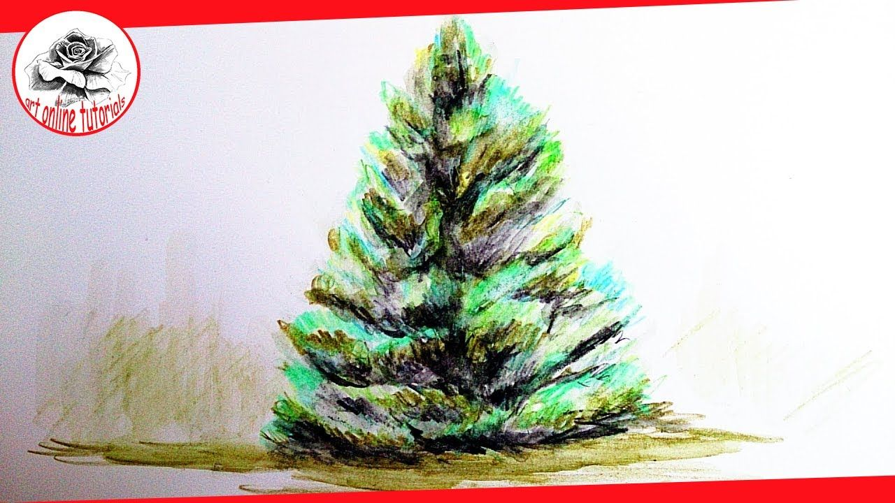How to Draw a Realistic Tree with Watercolor Pencils