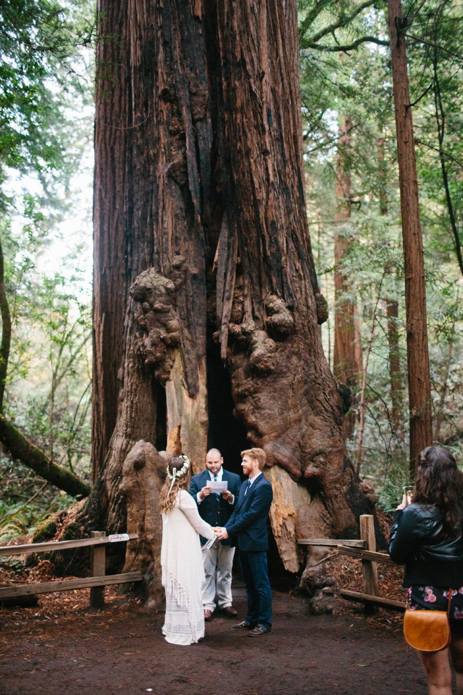 Muir Woods Wedding Elopement