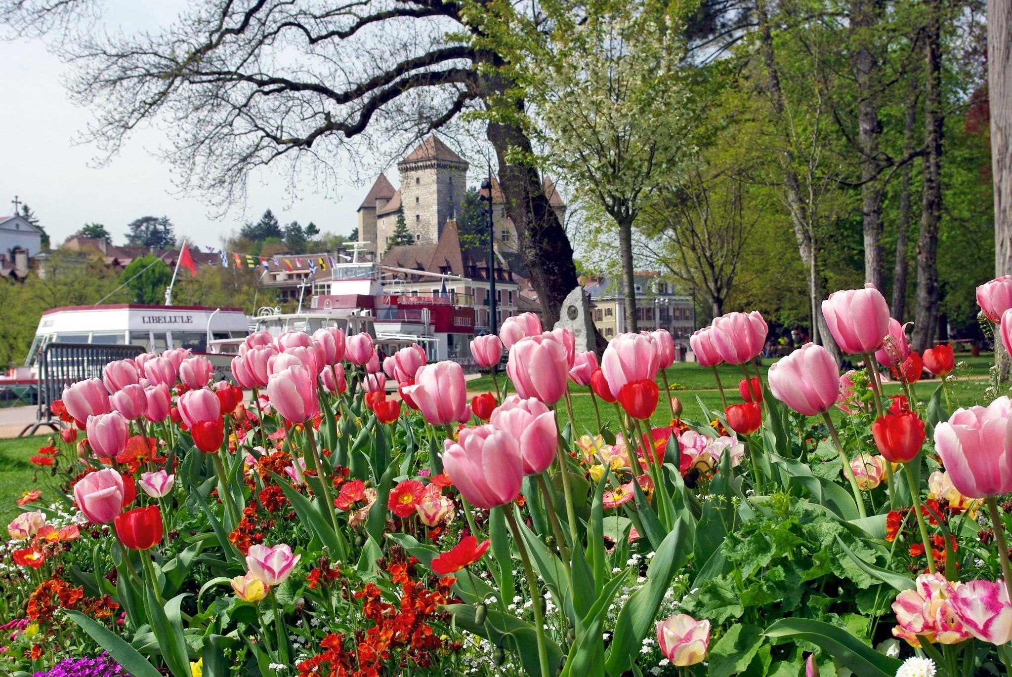 On our blog: a selection of photos taken during our stay in Annecy last week. // Dans notre blog : une sélection de photos prises pendant notre séjour à Annecy la semaine dernière.   #Annecy #HauteSavoie #SavoieMontBlanc