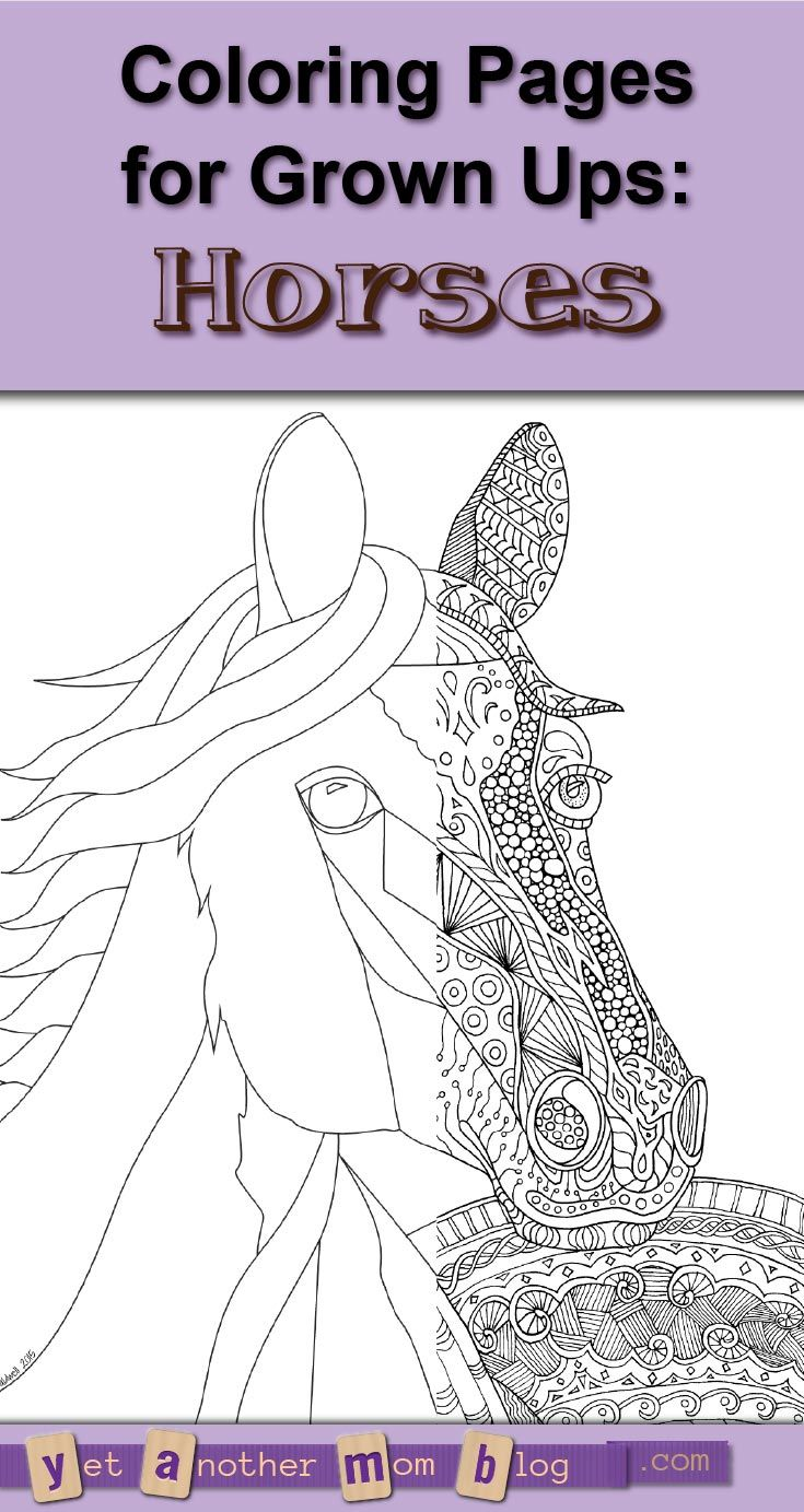 Zentangle Horse Coloring Page For The Grown Ups Plus A Bonus Plain And Easy Kids Or You To Yourself