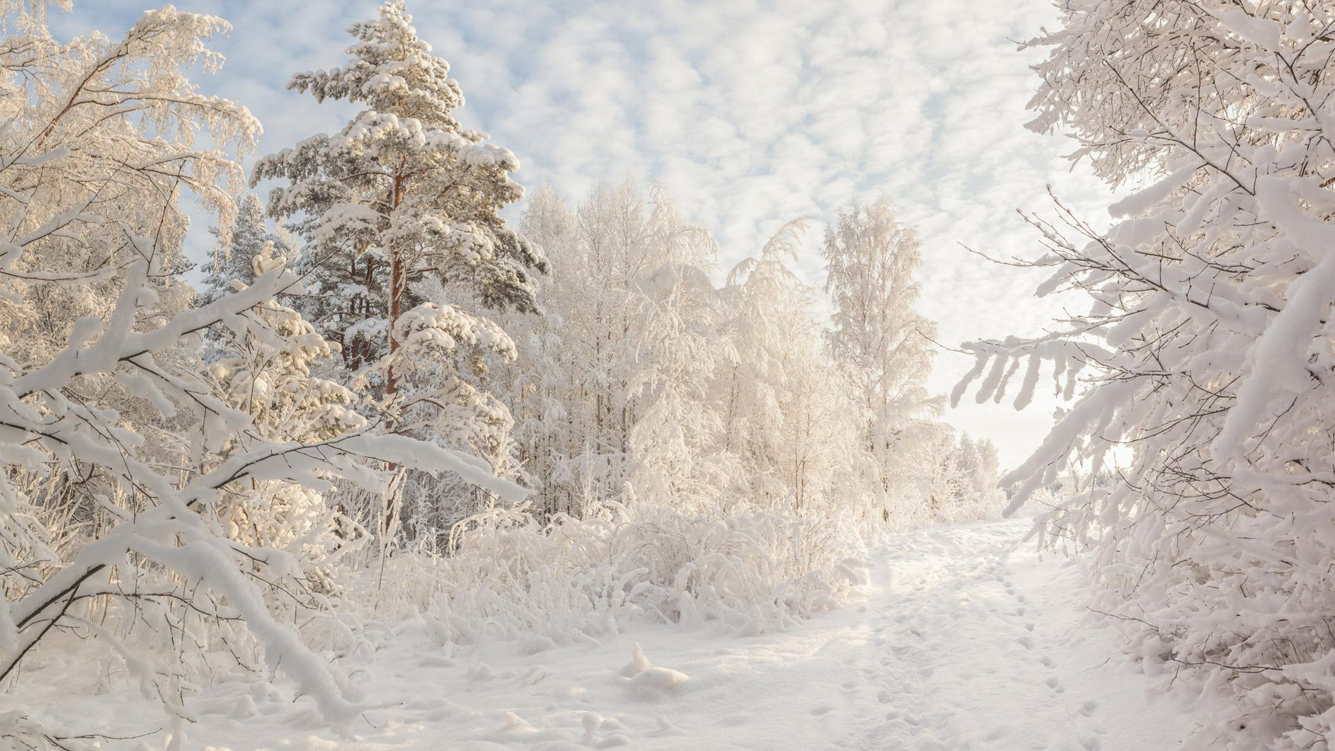 Beautiful Snowy Russian Winter Hd Wallpapers Volganga Winter Landscape Winter Pictures Winter Photos