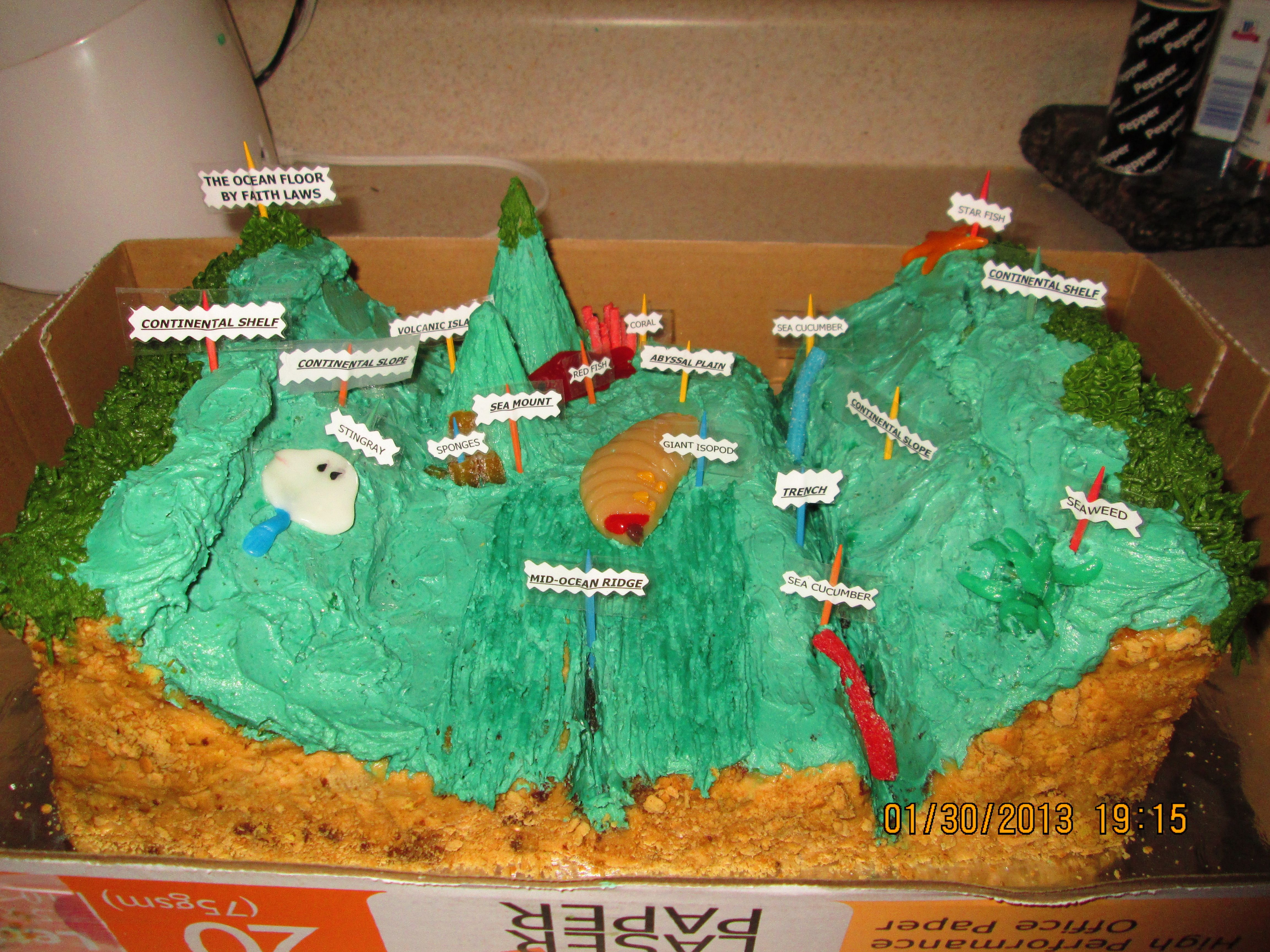 Ocean floor cake for science project | School project ...