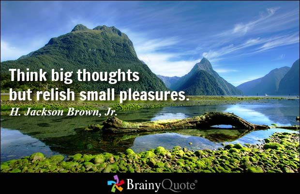Think big thoughts but relish small pleasures. - H. Jackson Brown, Jr. at BrainyQuote Mobile