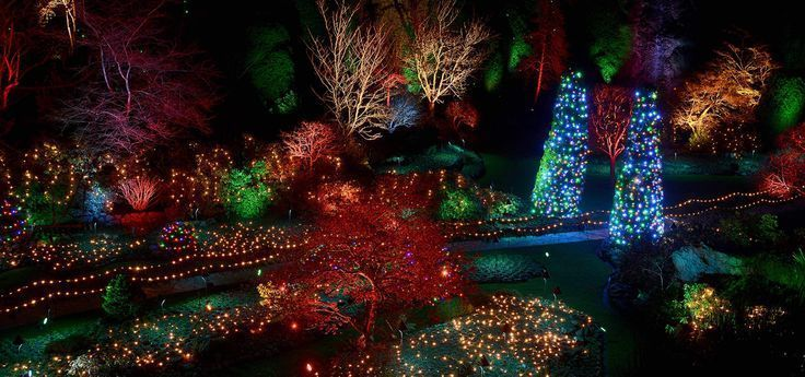 The Butchart Gardens spectacular Christmas light display with an affordable Vict...  #Affordable #Butchart #Christmas #display #ferrygarden #gardenideas #GARDENS #light #Spectacular #Vict  The Butchart Gardens spectacular Christmas light display with an affordable Vict…    The Butchart Gardens spectacular Christmas light display with an affordable Vict…  #Affordable #Butchart #Christmas #display #butchartgardens The Butchart Gardens spectacular Christmas light display with an affordable Vict #butchartgardens
