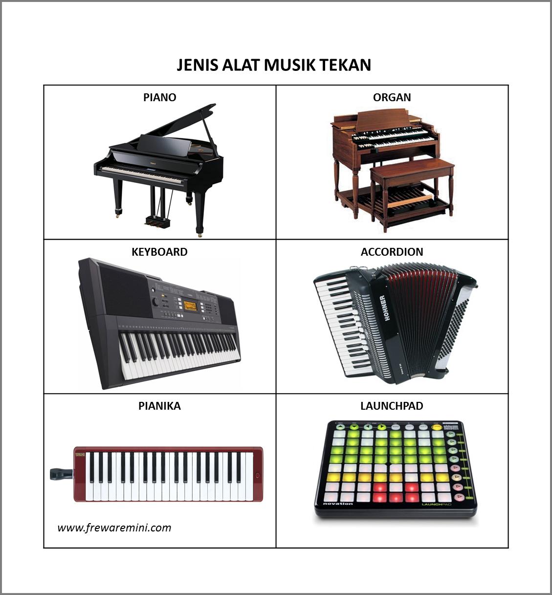 85 Gambar Alat Musik Accordion Terbaik