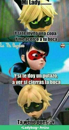 Memes De Ladybug Miraculous Ladybug Espanol Amino Memes De Ladybug Memes Memes De Risa