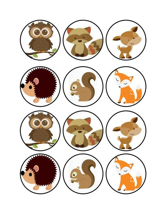 Edible Woodland Animals Cupcake Cookie Toppers by LogeauxCakes