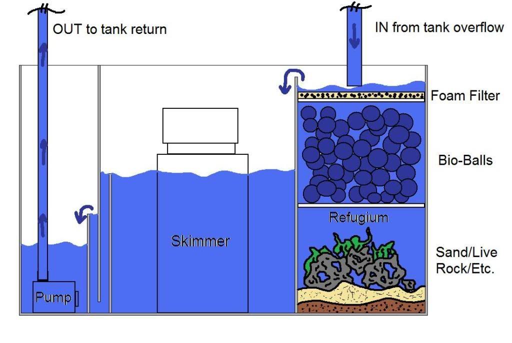 Fish Room Filter Design