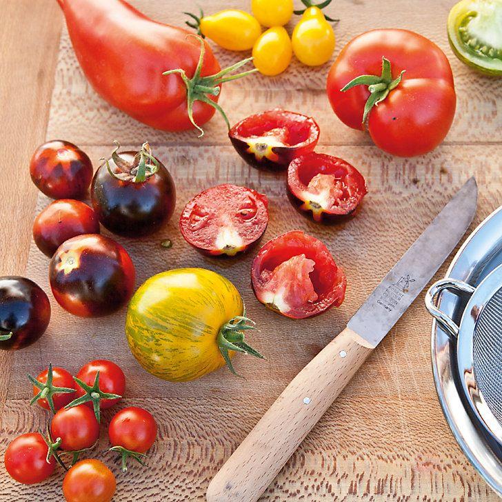Tomatensamen ernten und trocknen | Das Manufactum Gartenjahr