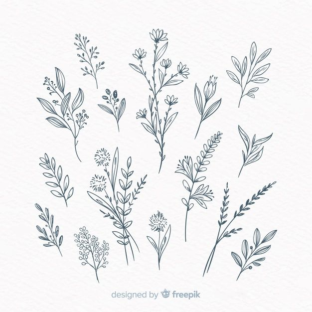 Lade Hand Gezeichnete Dekorative Mit Blumenelemente kostenlos herunter
