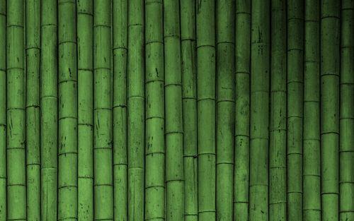 Bamboo Wallpaper Bamboo Wallpaper Green Wallpaper Bamboo Wood Flooring