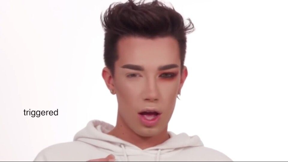 That Is Actually James Charles Mind You James Charles Charles Meme Relatable