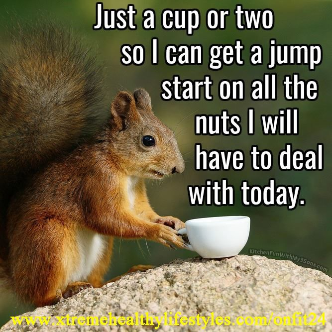 Jump start | Funny good morning quotes, Coffee humor ...