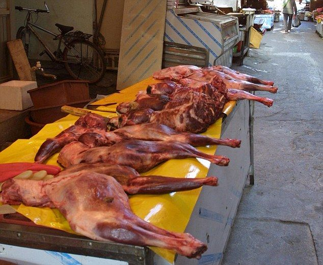 Korean Dog And Cat Meat Market
