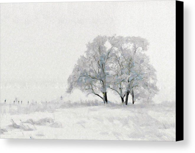 Beautiful white winter scene snow tree rural landscape canvas print canvas art by wall art prints
