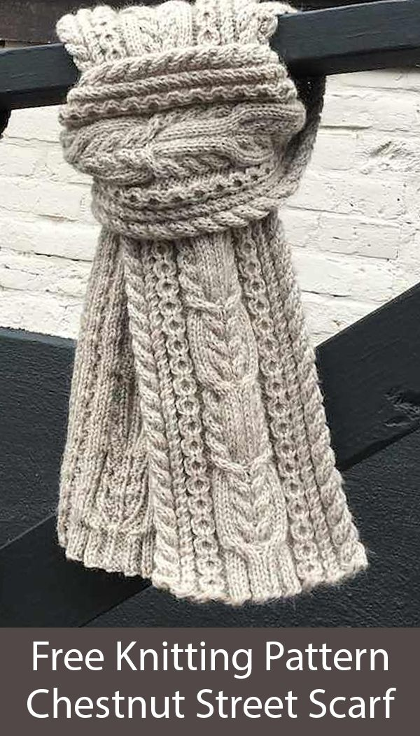 Photo of Free Knitting Pattern for Chestnut Street Cabled Scarf