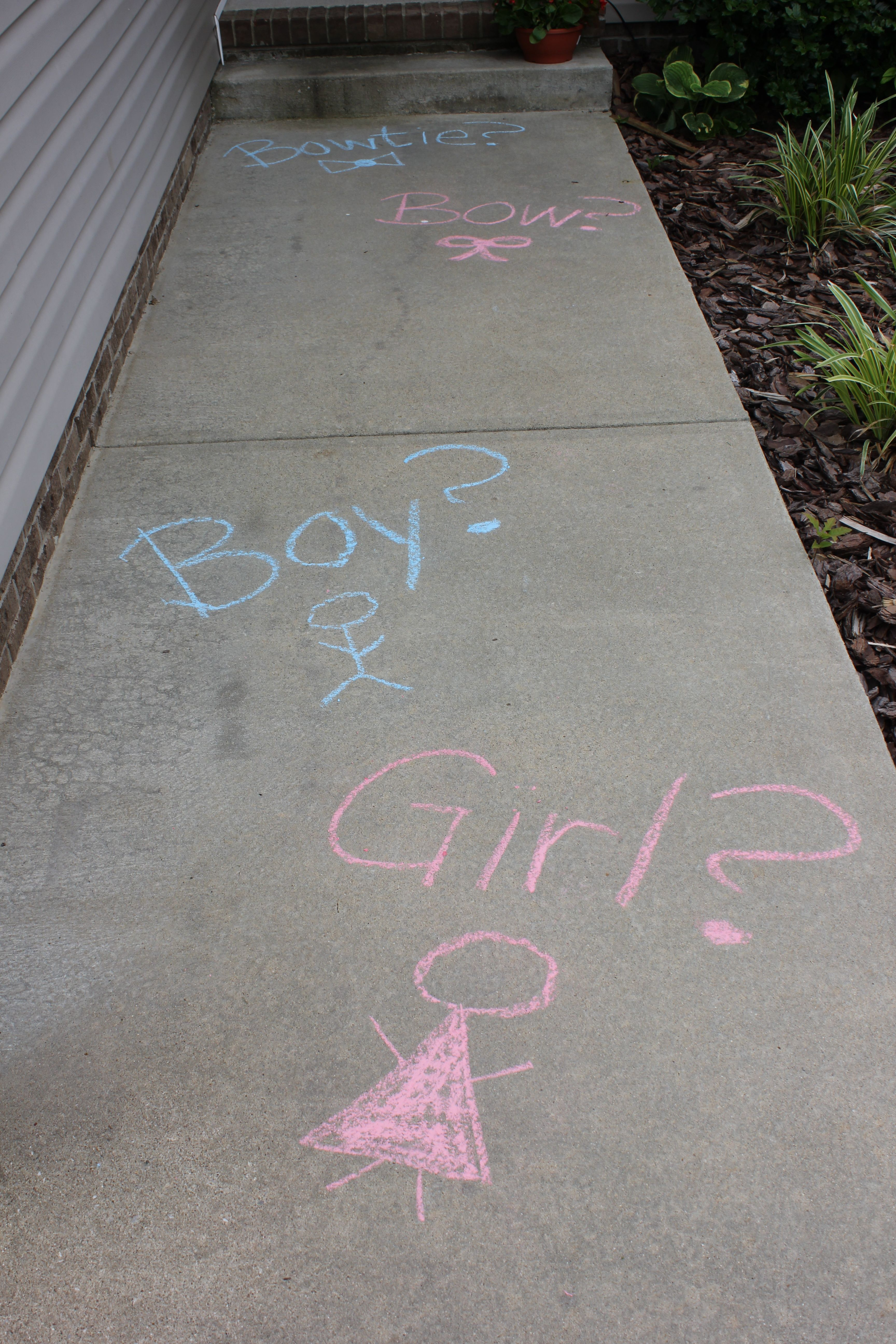 Chalk front entrance pic team beau or team bow with boy girl chalk front entrance pic team beau or team bow with boy girl symbols boy buycottarizona
