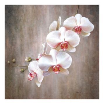 Orchids In Pink With Images Orchids Painting Flower Painting