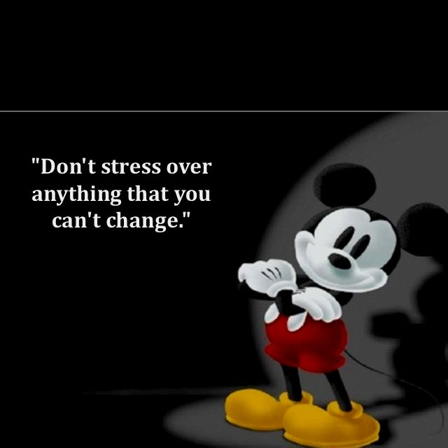Walt Disney Quote Dont Stress Over Anything That You Can