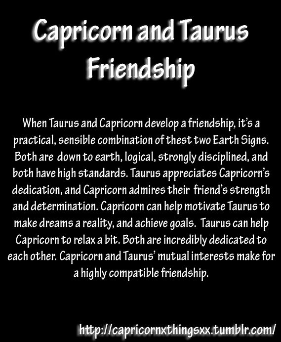 Relationship between capricorn and taurus
