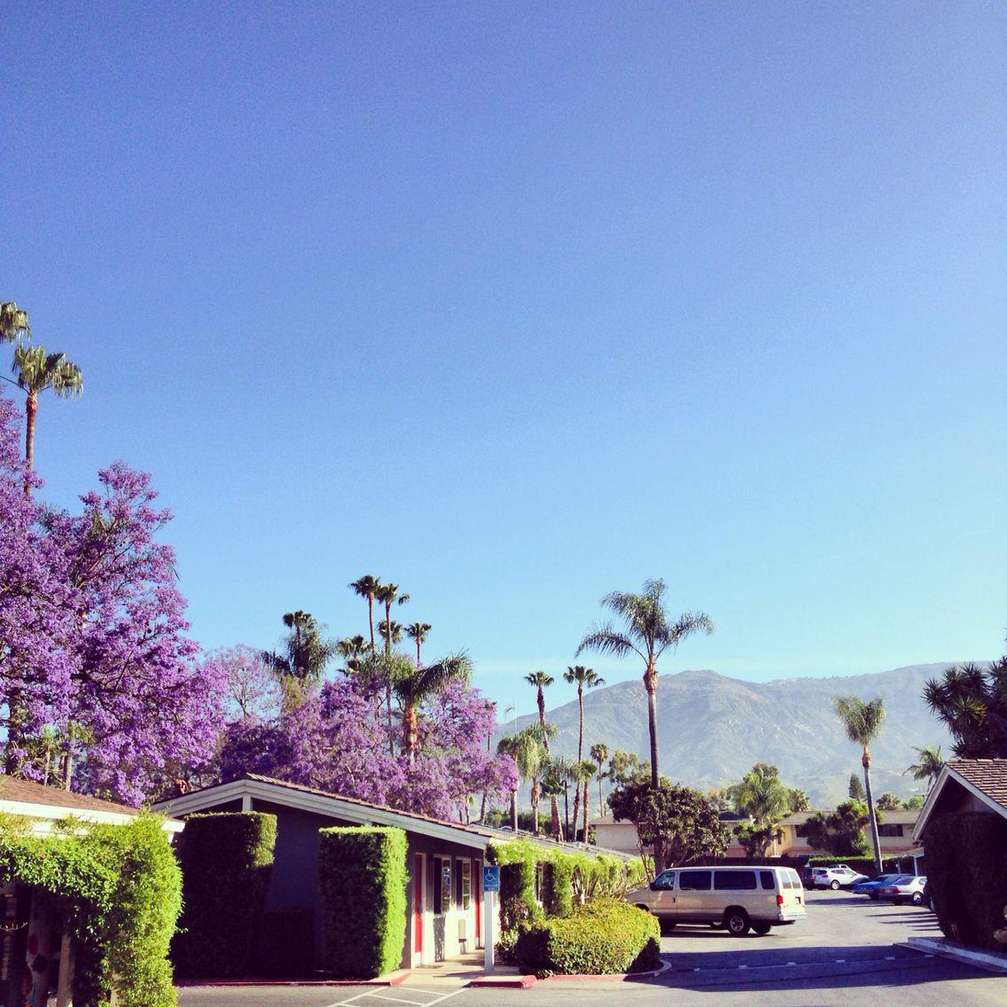 Santa Barbara - 2014