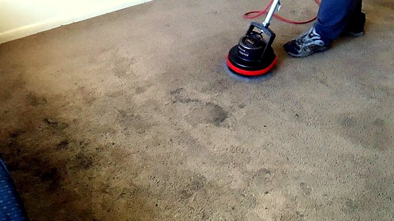 Dark Stains In Carpet Removed With Oreck Orbiter Oreck Dark Stains How To Remove