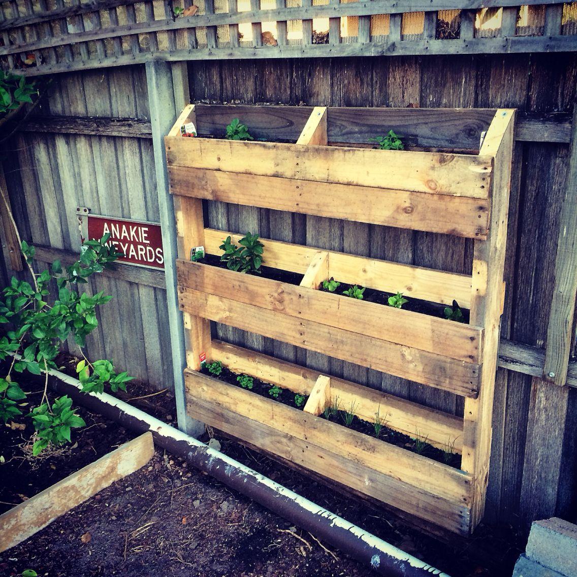 Pallet garden / wall garden | Healthy You Inc | Pinterest | Pallet ...