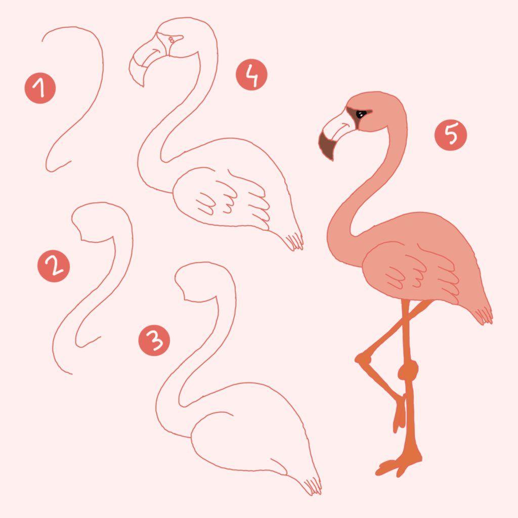 Flamingo Schnell Zeichnen Malen Lernen How