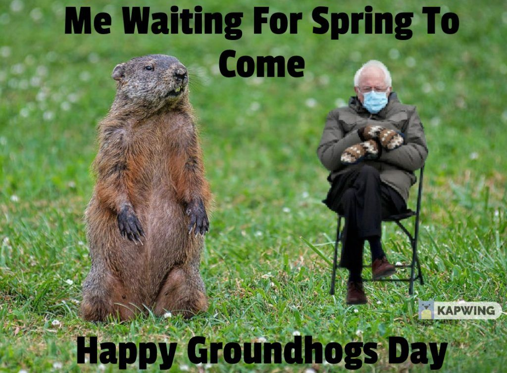 Collection Of Groundhogs Day Memes 2021 Guide For Moms In 2021 Groundhog Day Commercial Holiday Decor Happy Groundhog Day