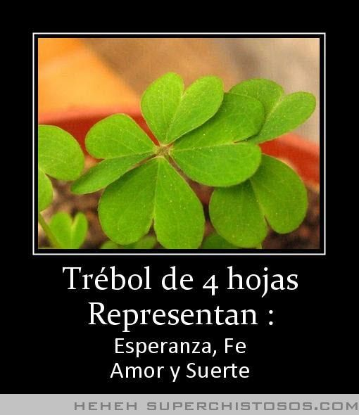 Trebol De Hojas Representan Photographs Pinterest Lucky Charm