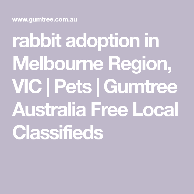 Rabbit Adoption In Melbourne Region Vic Pets Gumtree Australia Free Local Classifieds Rabbit Adoption Gumtree Australia Adoption