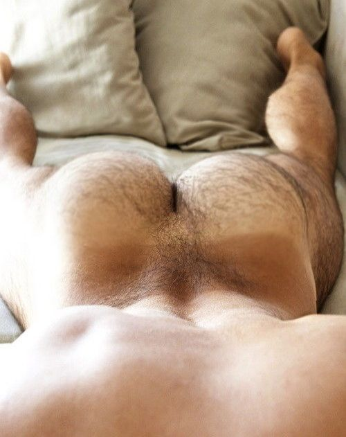 Hairy ass gay tube