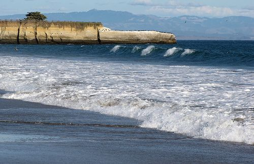 Pin by Lisa Dillon on Santa Cruz - Girls Trip '19 | Lake ...