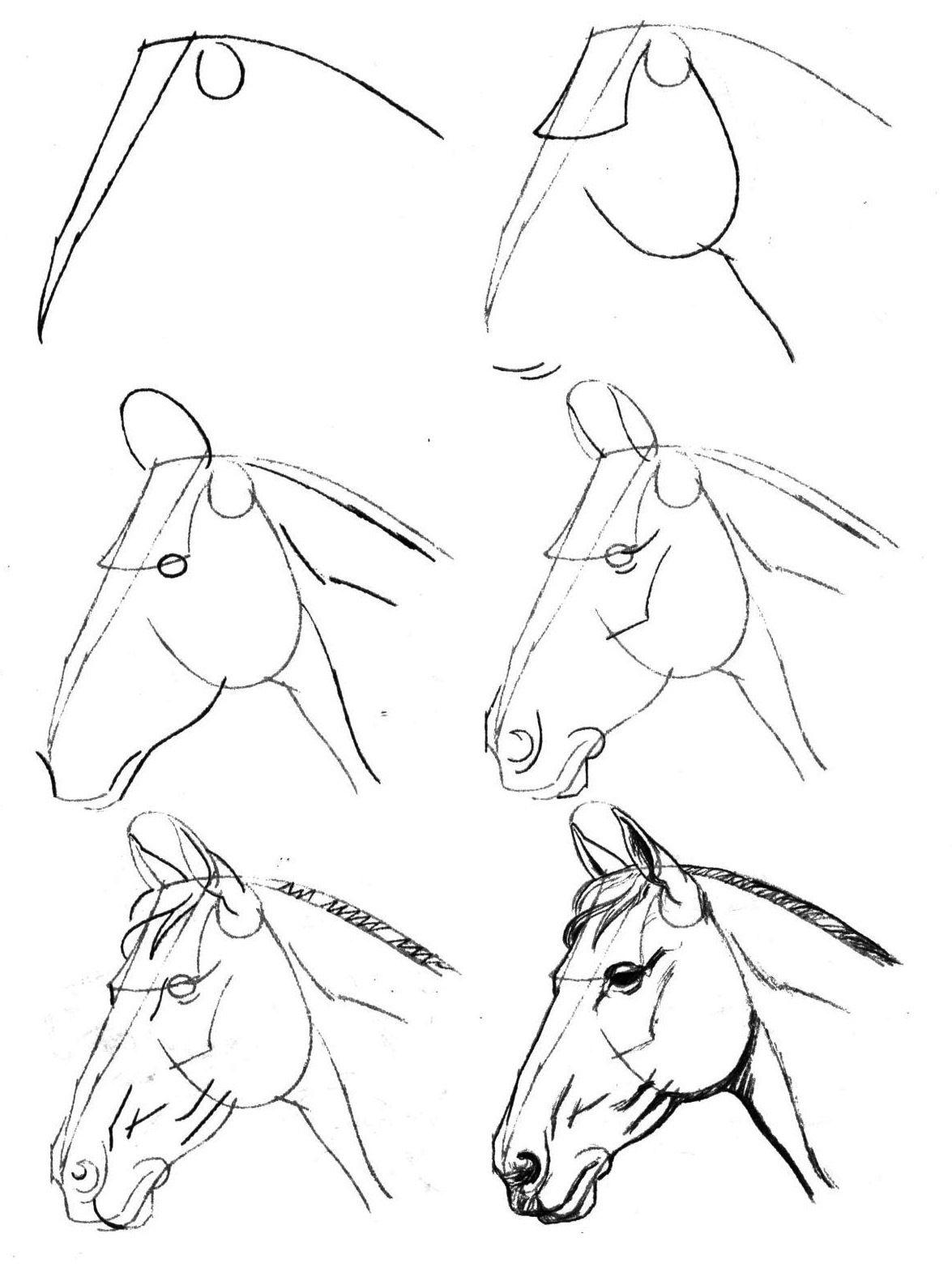 Как рисовать картинки карандашом легко, сам