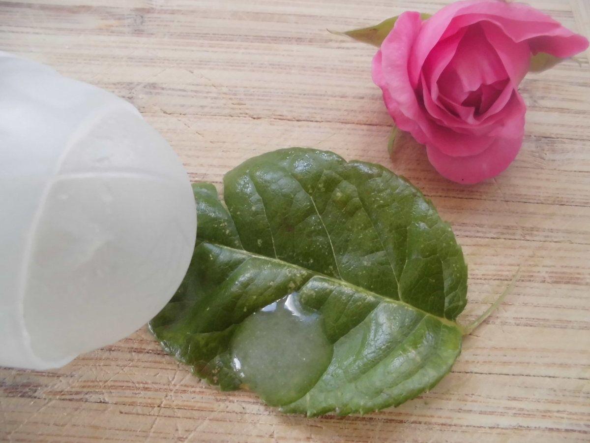 Bicarbonate De Soude Contre Les Pucerons deodorant à bille au patchouli | anti transpirant, billes
