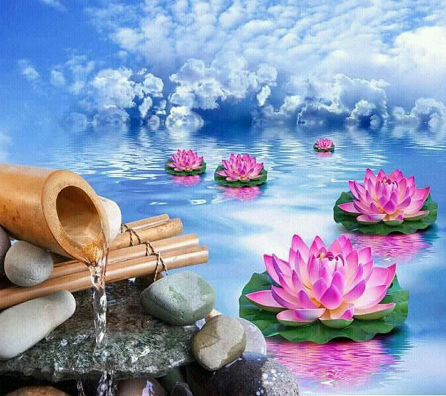 Pin by bint e ruqia on dpz pinterest feng shui considers the lotus a symbol of empowerment and enlightenment izmirmasajfo