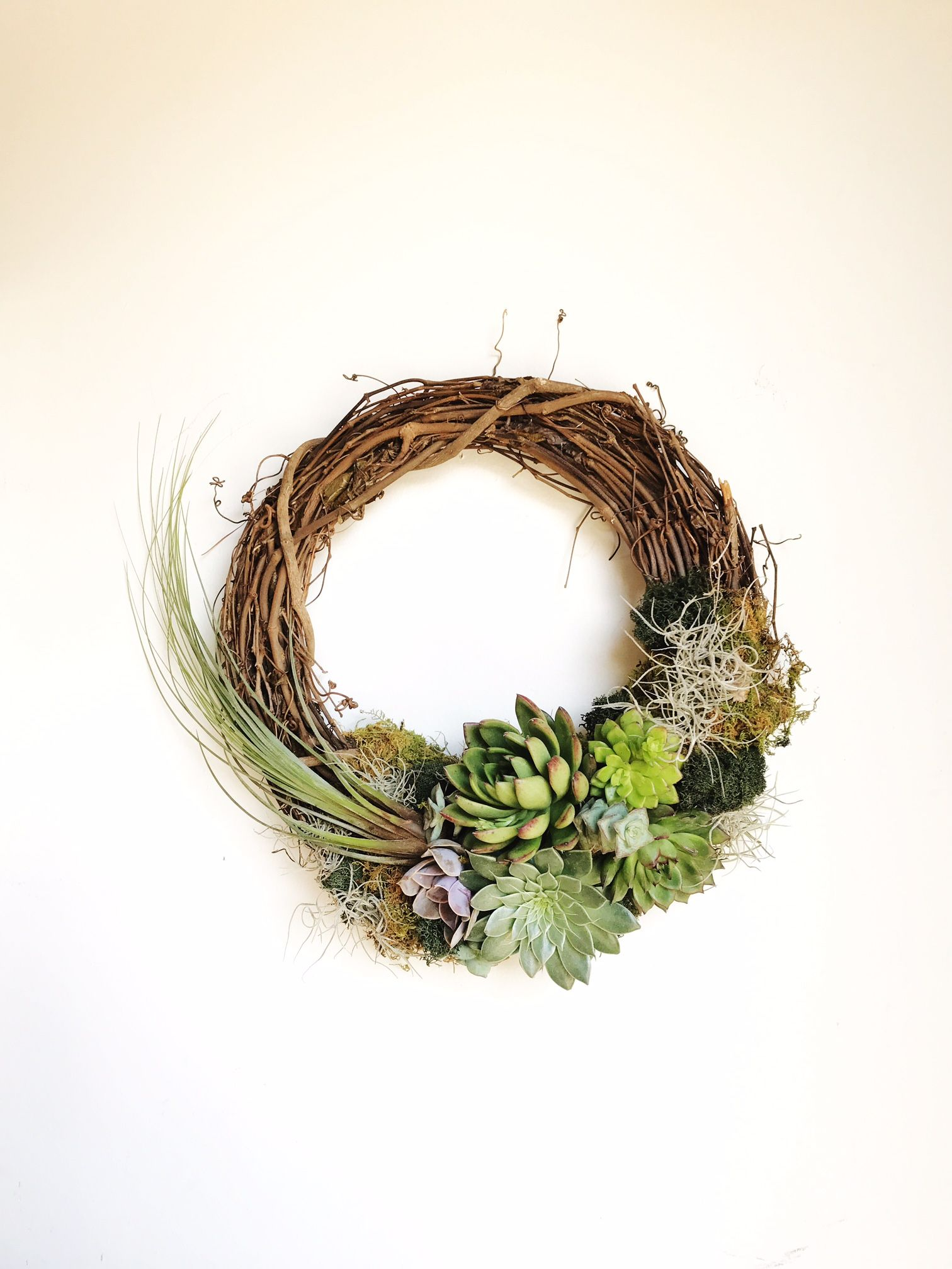 Succulent & Wreath Workshop with Flower and Fringe at Elizabeth Ave Station // West Palm Beach FL