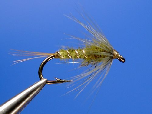 Skues medium olive nymph fly tying pinterest nymphs for Fly fishing nymphs