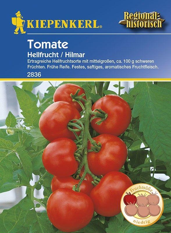 die besten 25 tomaten krankheiten ideen auf pinterest mehltau tomatenanzucht und. Black Bedroom Furniture Sets. Home Design Ideas