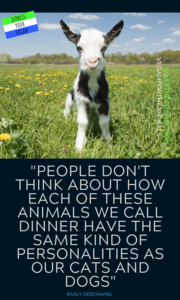 Express Your Vegan Quote Collection